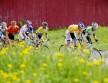 DESPERAT KAMP: Marc De Maar beholdt den gule trøya fra målgang i Sarpsborg til den siste etappen. Men til Eggemoen glapp det for UnitedHealthcare-rytteren. Foto: Kristoffer Øverli Andersen/www.procycling.no